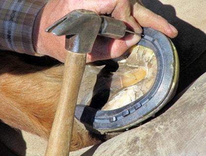 Hufschmiede-Werkzeug