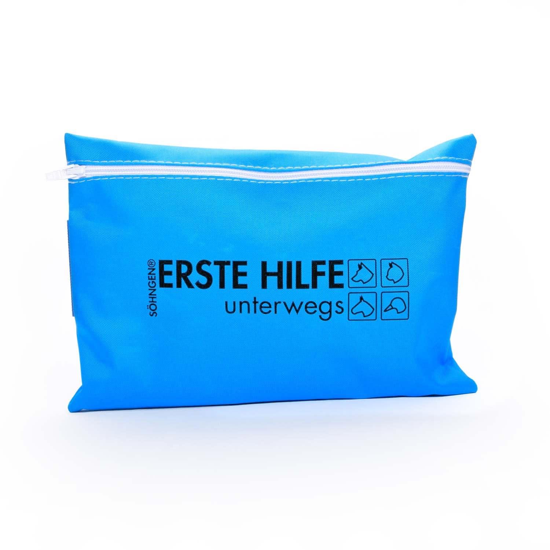https://static.praxisdienst.com/out/pictures/generated/product/1/1500_1500_100/191326-erste-hilfe-tasche-fr-hunde-1-shngen.jpg