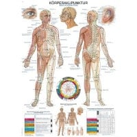 """Human Acupuncture"" Wall Chart"