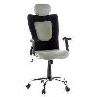 Designer Swivel Chair
