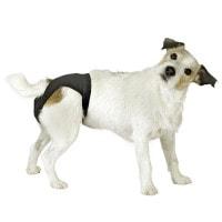 Culotte de protection pour chiennes