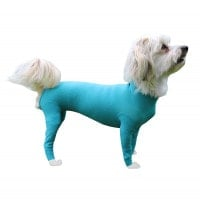 "Safety Body hond ""Legs & Zipper"""