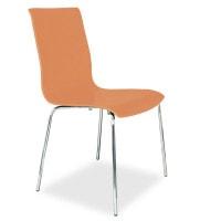 Design-Holzschalenstuhl