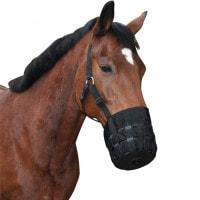 Pferdemaulkorb mit Halfter