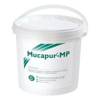 Mucapur MP