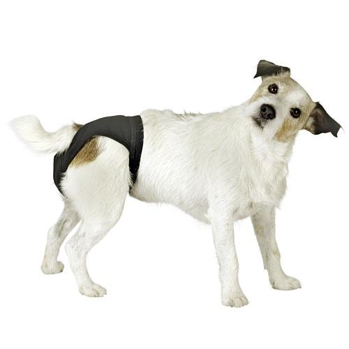 Hundeschutzhose