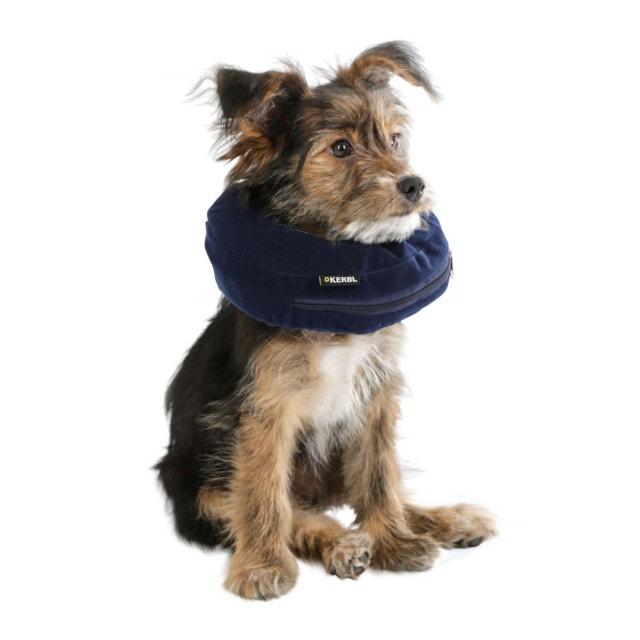 Hunde-Halskrause