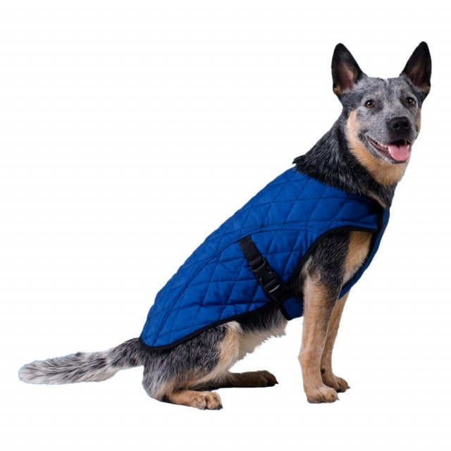 Aqua Coolkeeper cooling jacket, regulates body temperature in warm weather