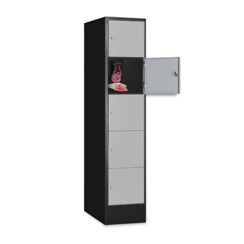 armoire consigne 30 cm de large noir gris. Black Bedroom Furniture Sets. Home Design Ideas