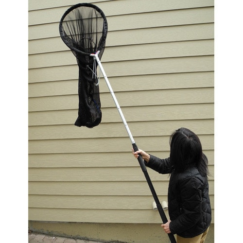 Catch Net with Telescopic Rod