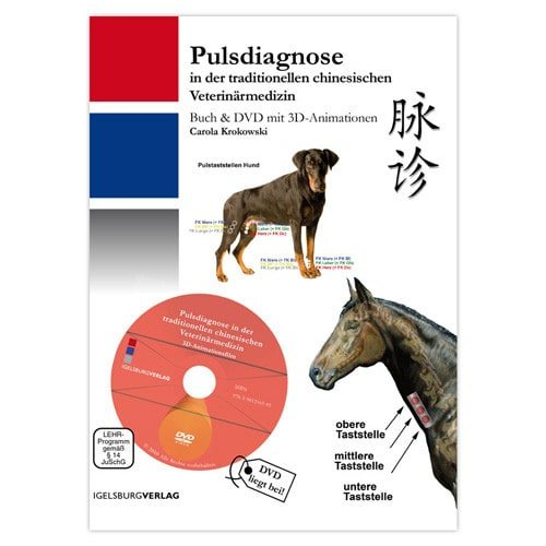 https://static.praxisdienst.com/out/pictures/generated/product/1/800_800_100/igelsburg_verlag_pulsdiagnose_191169.jpg