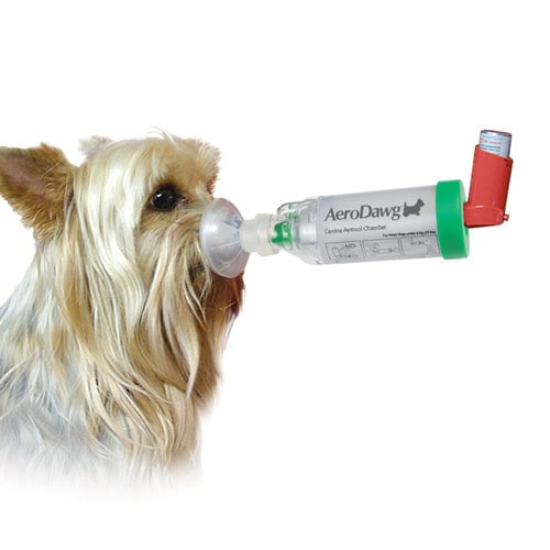 AeroDawg aerosol chamber for dogs