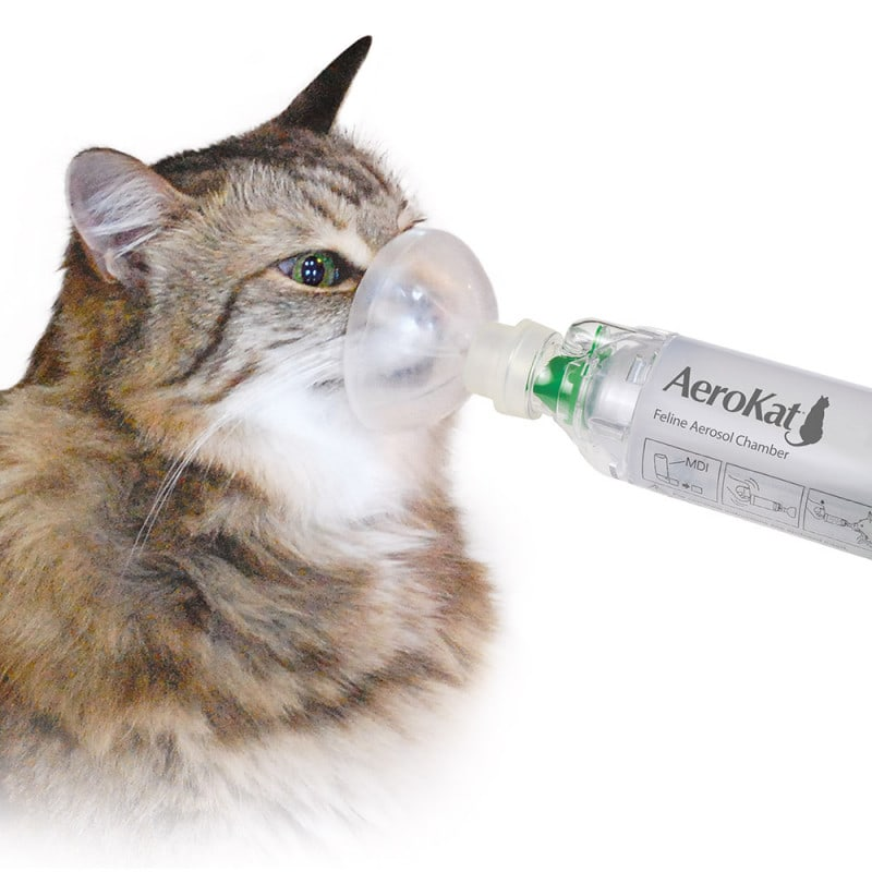 AeroKat Aerosol Chamber for Cats