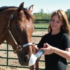 AeroHippus - Aerosolvorschaltkammer für Pferde mit Exspirationsventil
