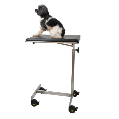 Operating table for small animals