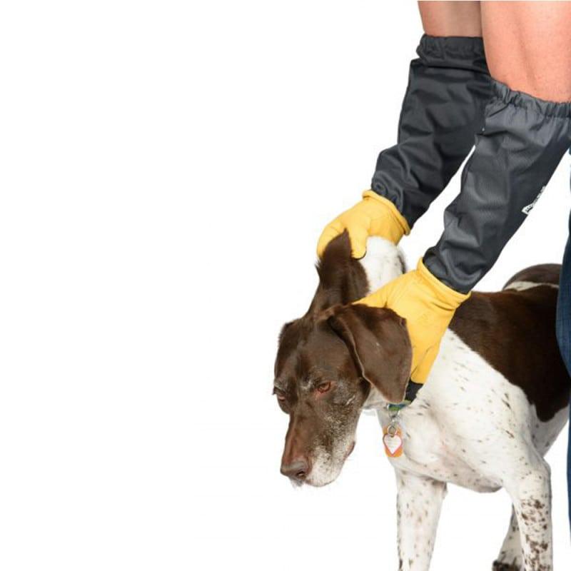 Schutzhandschuhe zur präzisen & sicheren Fixierung von Kleintieren