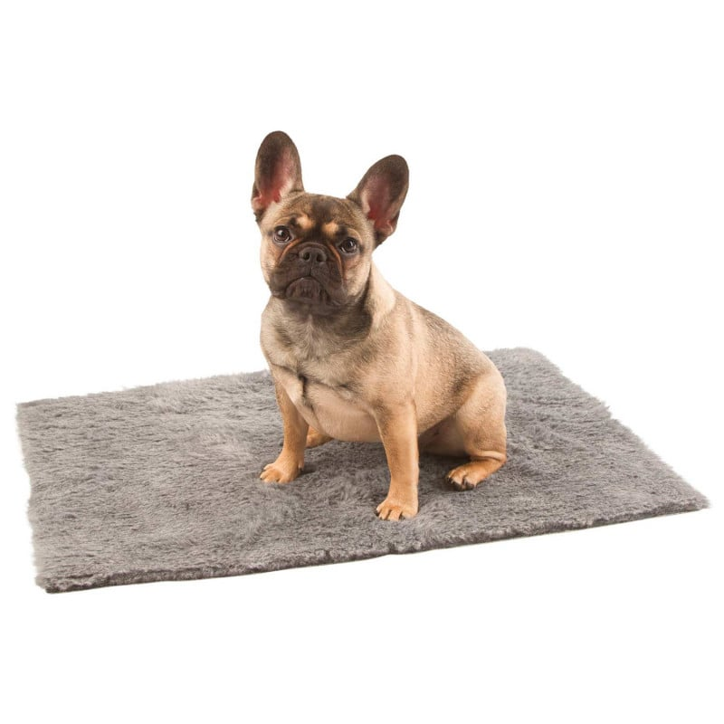 Optimally suited for animal shelters or ward cages in the veterinary clinic
