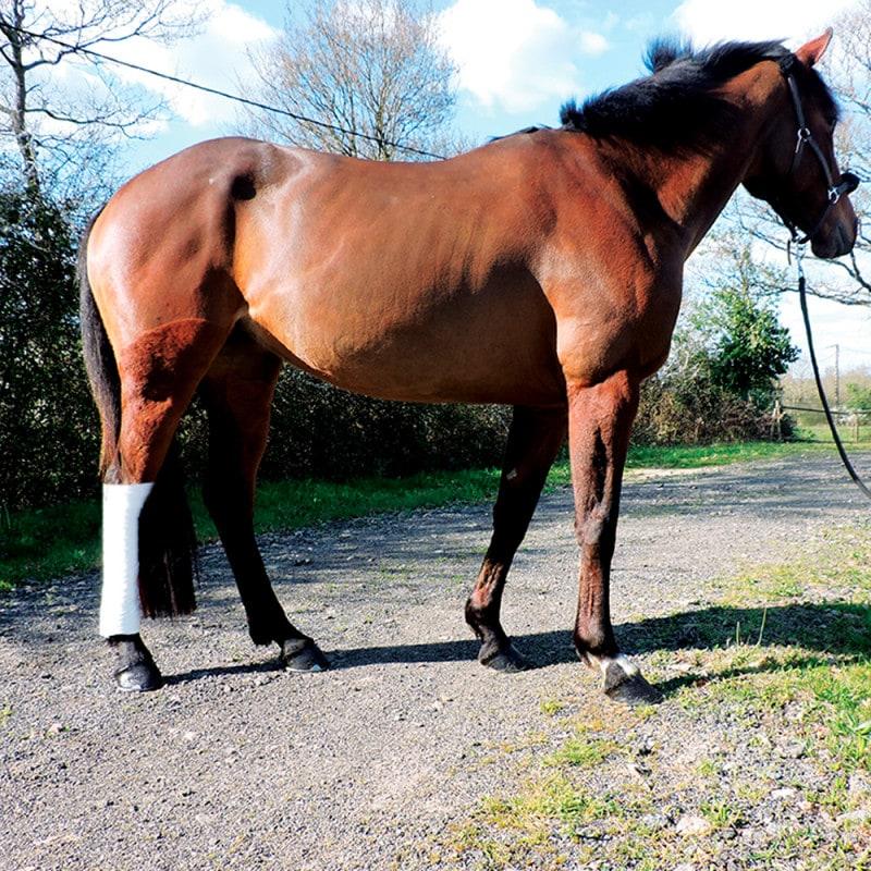 Equiplast verbandgaas voor paarden