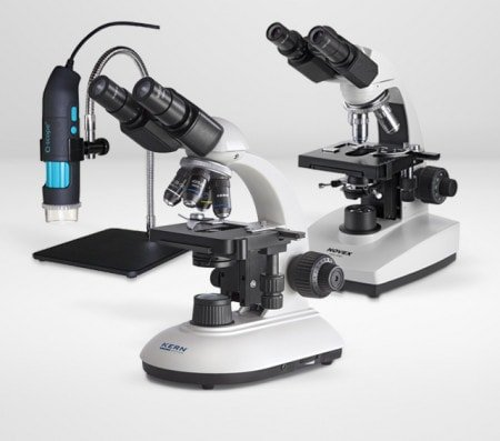 Lab Exams with the Microscope