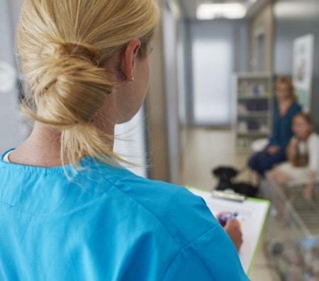 Einrichtung der Tierarztpraxis