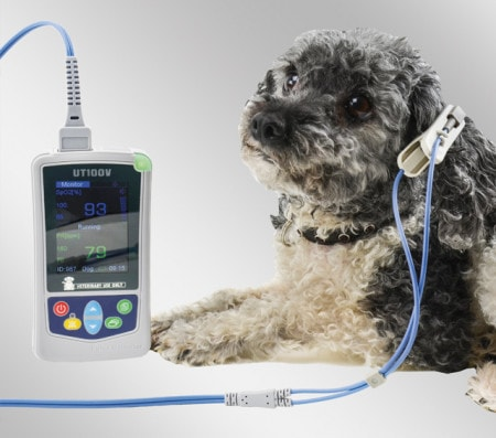 Pulse Oximeters for Animals