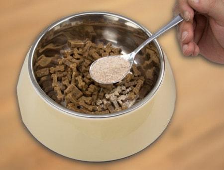 Compléments alimentaires pour chiens et chats