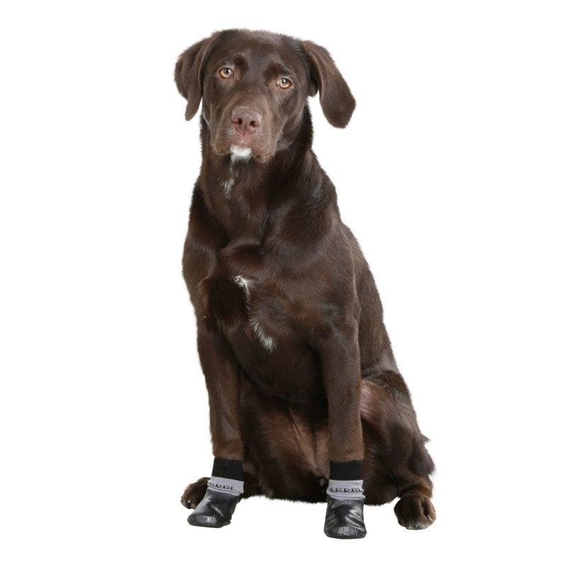 Hundesocke Susi