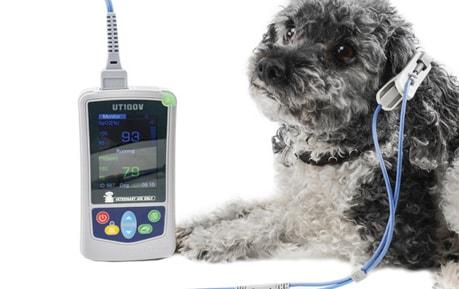 Veterinär-Pulsoximeter