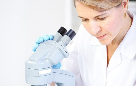 Microscopes: Lab Equipment for Veterinarians