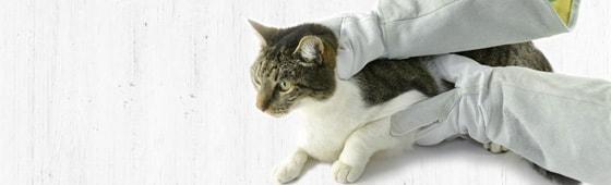 Schutzhandschuhe