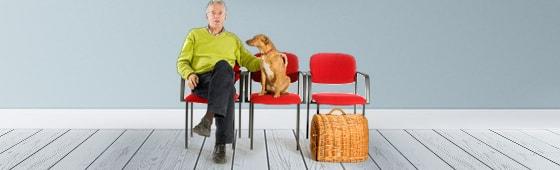 Stühle, Sessel und Hocker für die Tierarztpraxis