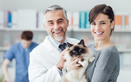 Tierarztbedarf und Veterinärbedarf