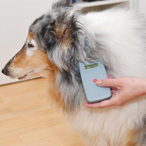 Chip-Lesegerät «Multi-Pocket-Reader» von Teledart zur Auslesung von ISO DFX-B- und Trovan-Transpondern