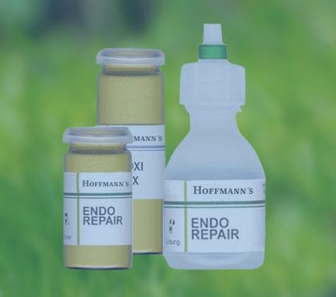 Natural Dental Products