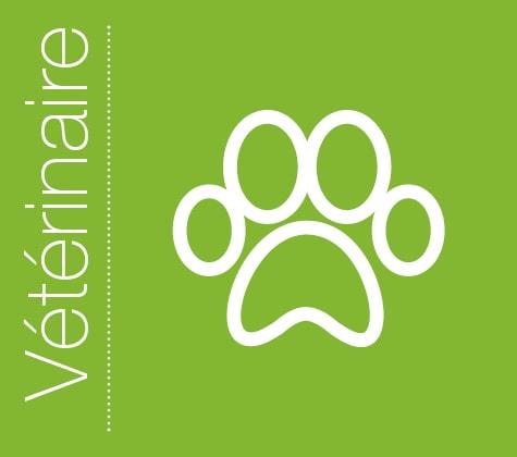 Praxisdienst vétérinaire