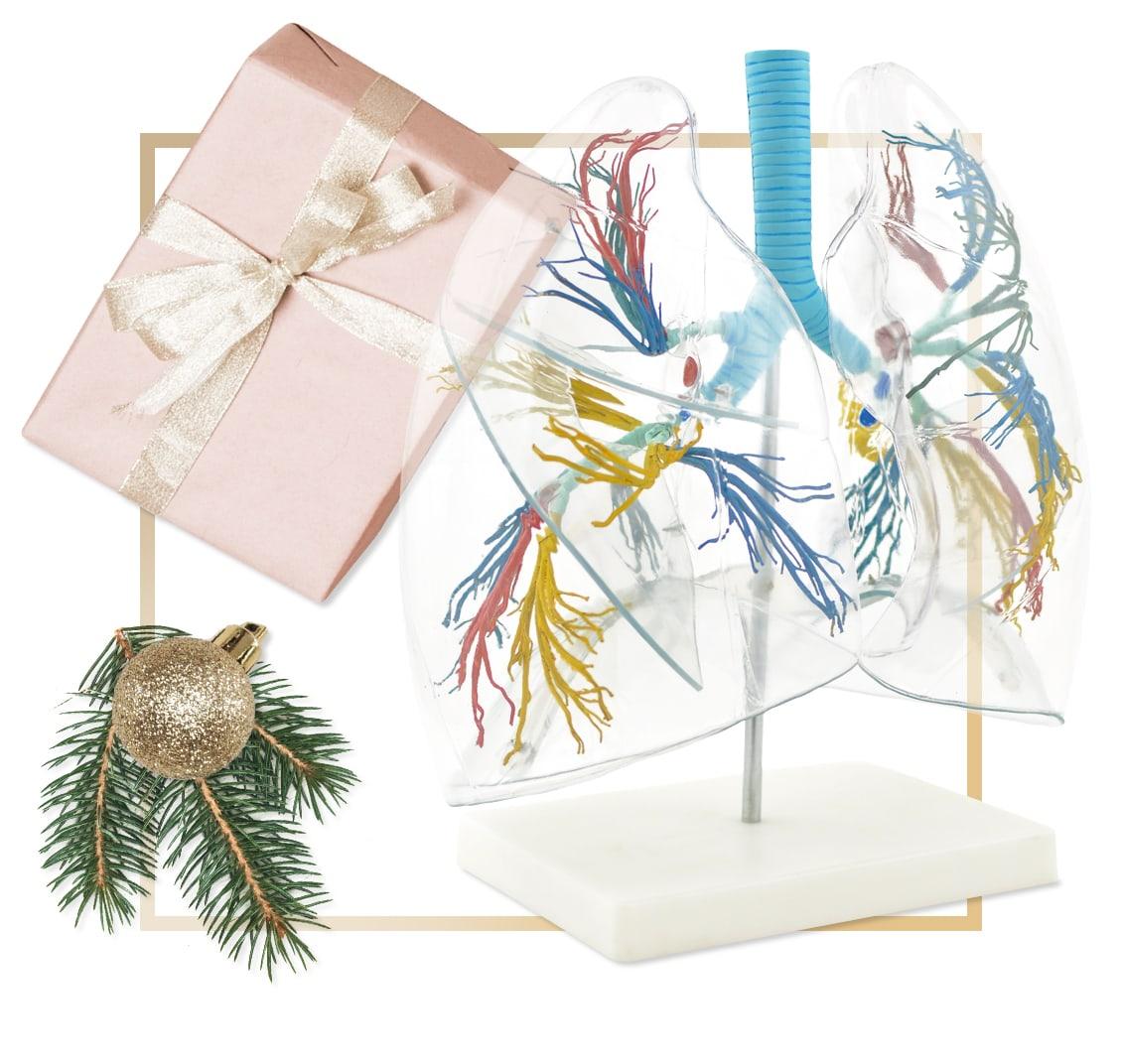 Anatomical Model Christmas Gift