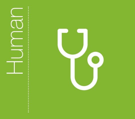 Praxisdienst Human