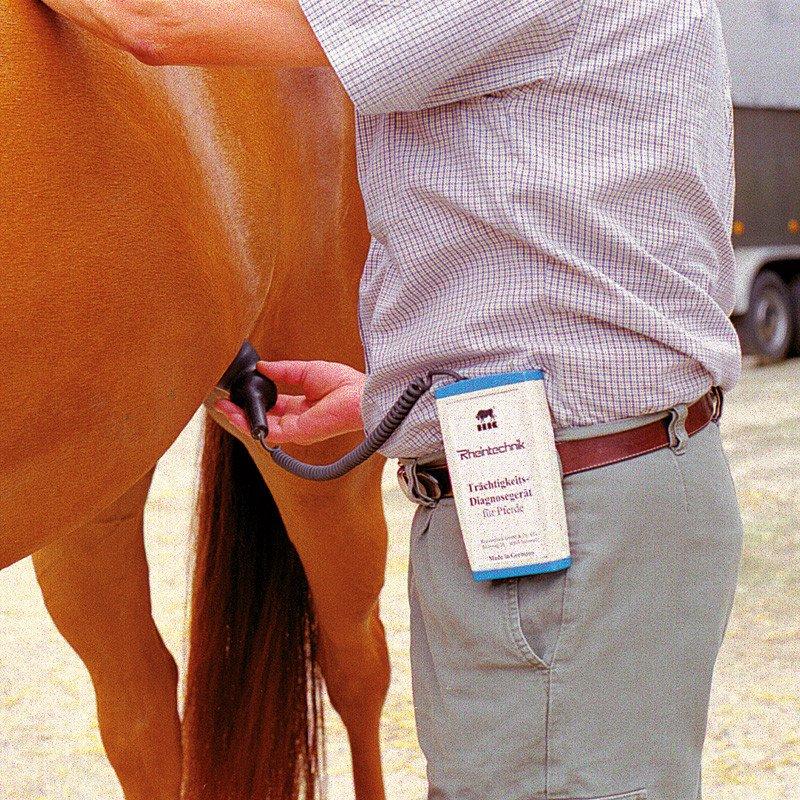 Wykrywacz ciąży dla koni