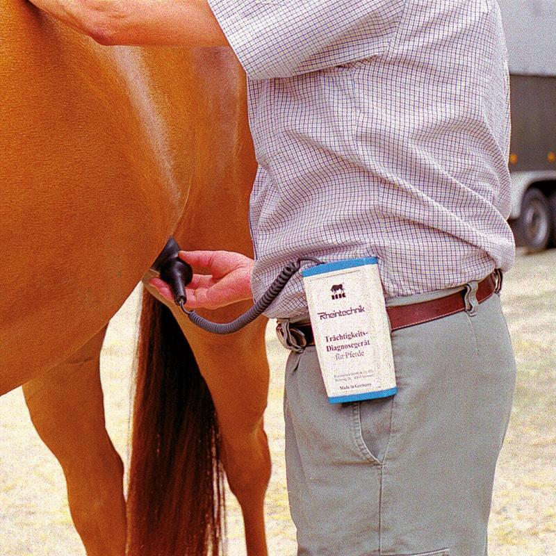 Rilevatore di gravidanza per cavalli