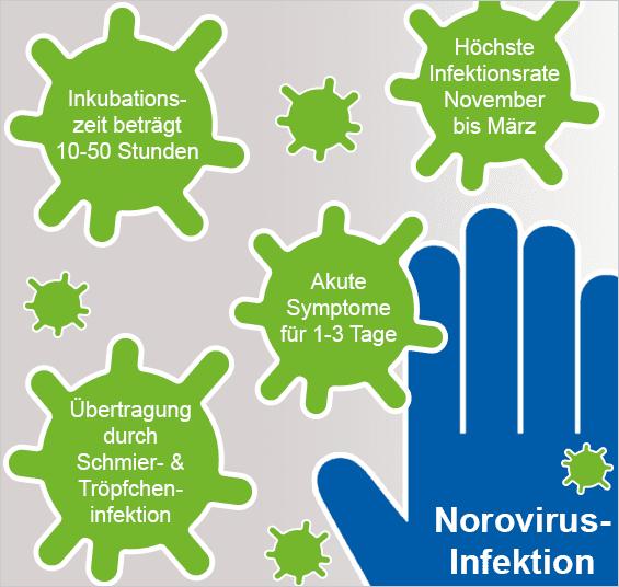 Noroviren Infos Zur Norovirus Infektion Praxisdienst