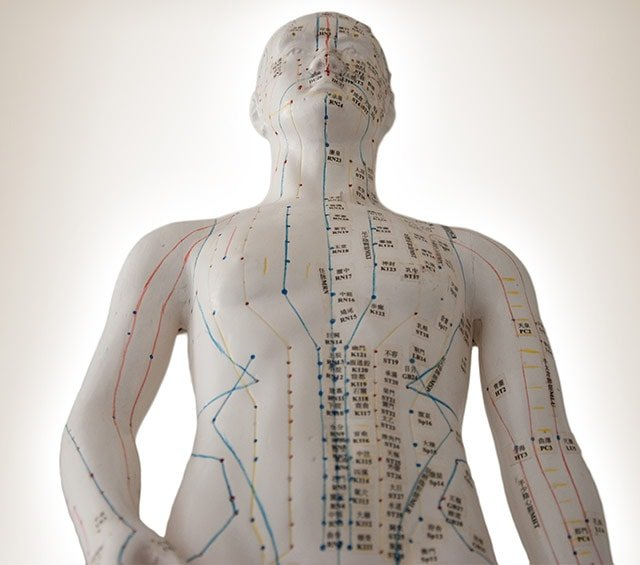 Modelli per agopuntura