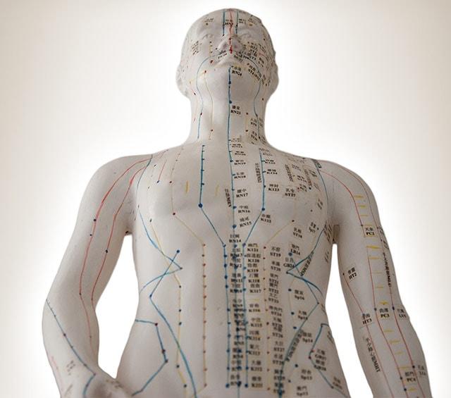 Modèles d'acupuncture