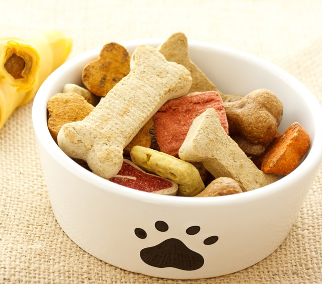 Animal Snacks & Treats
