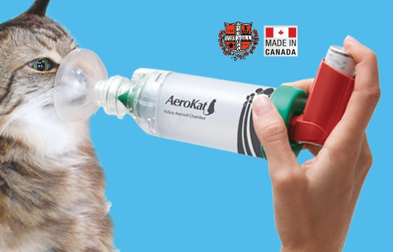 AeroKat Inhalator