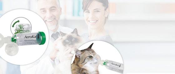 AeroKat Feline Aerosal Inhaler