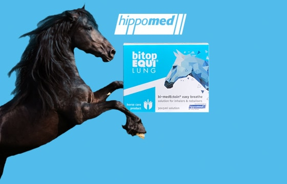 Preparat do inhalacji u koni