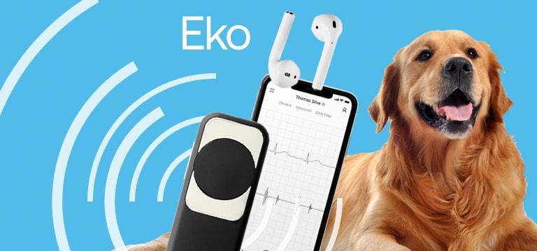 Veterinärmedizinisches Eko DUO