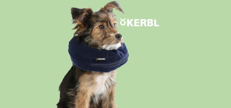 Collare gonfiabile per cani