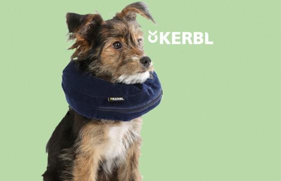 Aufblasbare Hunde-Halskrausen
