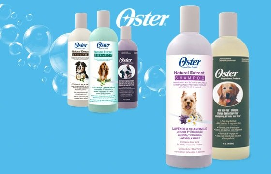 Shampooing Oster